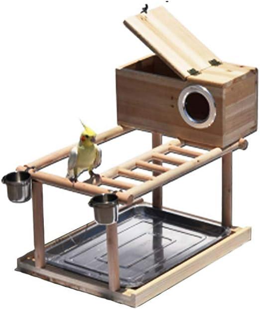 FXQIN Nido de Pájaro Centro de Juego para Pájaros, área de Juegos para Loros, Perchas de Madera para pájaros, con Puente Giratorio Escaleras de Madera para Subir/Bandeja de Acero Inoxidable: Amazon.es: Productos
