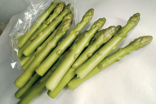 Artificial Asparagus, Small, Bag of 24 by BIC