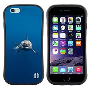 "Hypernova Slim Fit Dual Barniz Protector Caso Case Funda Para Apple (5.5 inches!!!) iPhone 6 Plus / 6S Plus ( 5.5 ) [Tiburón Tiburón Peligro Diver Buceo""]"