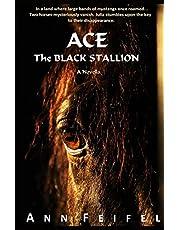 Ace, The Black Stallion
