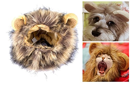 Itplus Pet Cosplay Costume Adjustable Lion Mane Wig Hat for Cat or Small Dog Puppy Hair Accessories Dress up with Ears Christmas Party Festival by Itplus (Image #2)