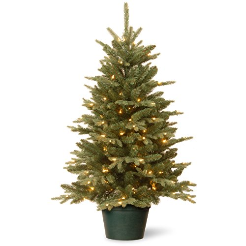 National Tree 3 Foot Everyday Collections Tree with 100 Clear Light in Green Pot (ED3-307-30) by National Tree Company