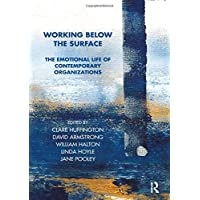 Working Below the Surface: The Emotional Life of Contemporary Organizations: The Emotional Life of Contemporary Organisations