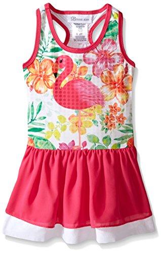 - Bonnie Jean Little Girls' Sleevless Graphic Knit Dress, Flamingo, 6X