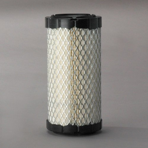Donaldson P822686 Replacement for EZGO 28463G01 Air Filter Element (Canister Style)