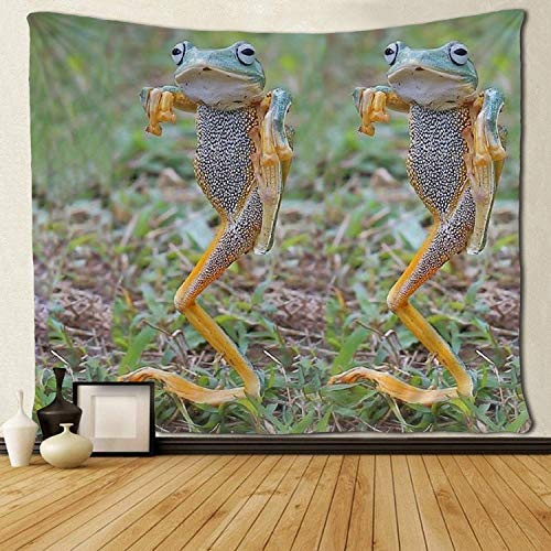 SARA NELL Wall Tapestry Hip Hop Frog Tapestries Hippie Art Wall Hanging Throw Tablecloth 60X90 Inches for Bedroom Living Room Dorm Room