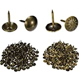 Tatuo 300 Pieces Bronze Upholstery Nails Furniture Nails Pins Tacks in 2 Types Antique Brass Daisy and Smooth with Box