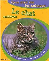 Le chat malicieux par Chiafen Her
