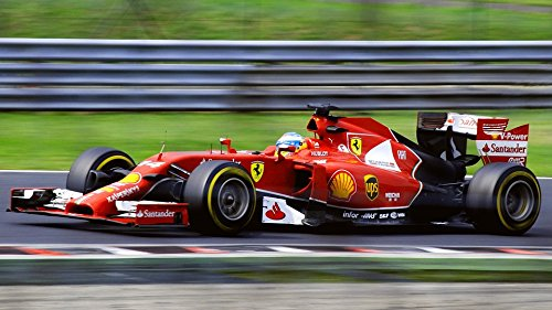 Home Comforts Laminated Poster Fernand Alonso Ferrari for sale  Delivered anywhere in USA