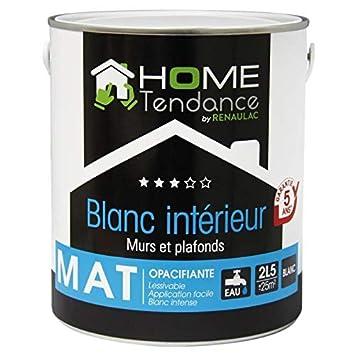 Peinture Murale 2 5l Blanc Mat Lessivable Home Tendance