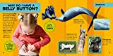 National Geographic Little Kids First Big Book of Why 画像2