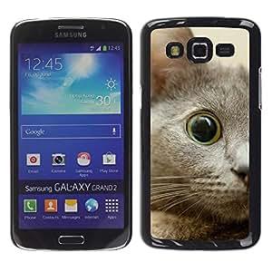 Be Good Phone Accessory // Dura Cáscara cubierta Protectora Caso Carcasa Funda de Protección para Samsung Galaxy Grand 2 SM-G7102 SM-G7105 // Nebelung Kitten Eye Cat Russian Blue