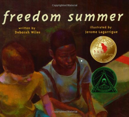 Image result for Freedom summer book