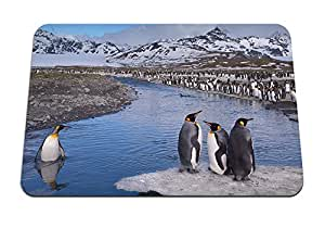 """Penguins, Mountain- Mouse Pad - Gaming Mouse Pad - 8.6""""x7.1"""" inches"""