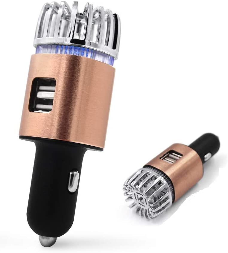 9th Generation Portable 2 in 1 Ionizer Car Air Purifier /& Dual USB Car Charger Silver