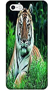 Fantastic Faye Cell Phone Cases For iPhone 4/4S No.2 The Special Design With Cute Foolishly Gray Pure Tiger On The Water Grass