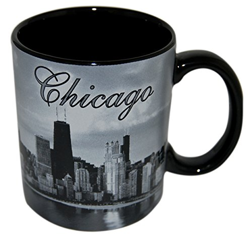 City of Chicago at Night, Skyline Coffee Mug- Made by CityDreamShop.com -
