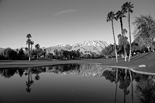 Pond in a golf course Desert Princess Country Club Palm Springs Riverside County California USA Poster Print by Panoramic Images (36 x 24) ()
