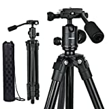 Compact camera tripod, portable DSLR projector stand with quick release plate, 360 degree ball head and flip leg lock for travel and work