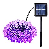 Qedertek Solar String Lights Cherry Blossom, 23ft 50 LED Waterproof Outdoor Decoration Lighting for Indoor/Outdoor, Patio, Lawn, Garden, Christmas, and Holiday Festivals (Purple)