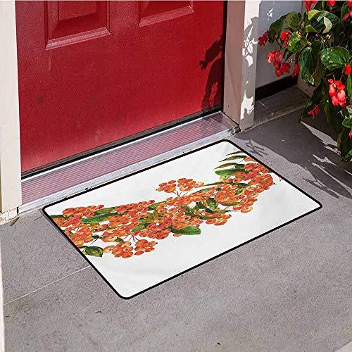 Jinguizi Rowan Front Door mat Carpet Hand Painted Border Full of Rowan Berries Vintage Style Watercolor Flora Machine Washable Door mat W19.7 x L31.5 Inch Coral Dark Green White