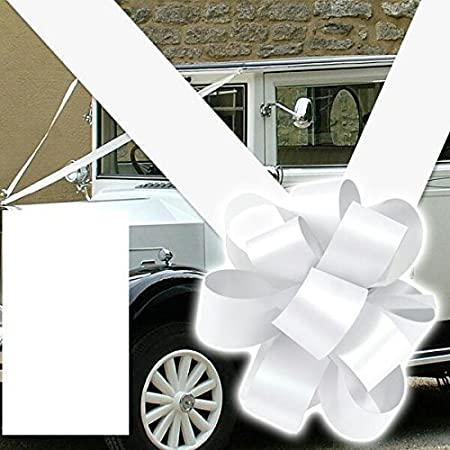 Oasis ribbon bows wedding car decoration kit 3 large 6 bows oasis ribbon bows wedding car decoration kit 3 large 6quot junglespirit Gallery