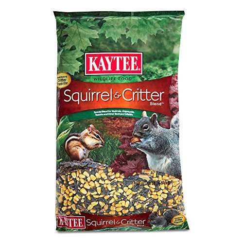 Kaytee Products Squirrel Critter Blend product image