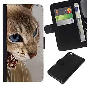 KingStore / Leather Etui en cuir / HTC Desire 820 / Cat Blue Eyes Marrón Blanco Enojado Dientes