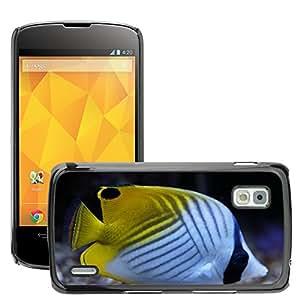 Print Motif Coque de protection Case Cover // M00156242 Pez ángel Pez ángel Modelo colorido // LG Nexus 4 E960