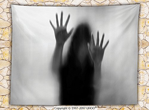 Horror House Decor Fleece Throw Blanket Silhouette of Woman behind the Veil Scared to Death Obscured Paranormal Photo Throw Gray by iPrint