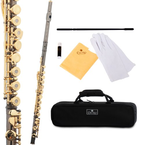 Cecilio FE-282BNG Black Nickel Plated Body and Gold Plated Keys Intermediate Open/Closed Hole C Flute with Case by Cecilio