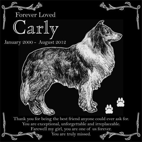 Personalized Rough Collie Pet Memorial 12