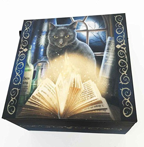 Lisa Parker Magical Bewitched Cat With Glowing Spell Book Jewelry Mirror Box
