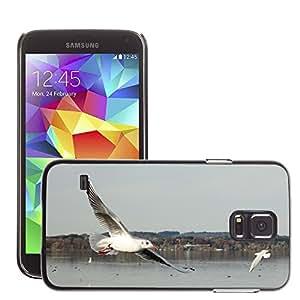 Etui Housse Coque de Protection Cover Rigide pour // M00115585 Gaviota Pájaro Volar Libertad Sky Lake // Samsung Galaxy S5 S V SV i9600 (Not Fits S5 ACTIVE)