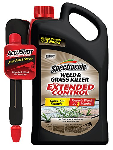Spectracide Weed & Grass Killer With Extended Control, AccuS