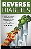 img - for Reverse Diabetes: A Guide To Treating And Reversing Diabetes With Diet And A Proven Cure Plan To Lower Your Blood Sugar book / textbook / text book