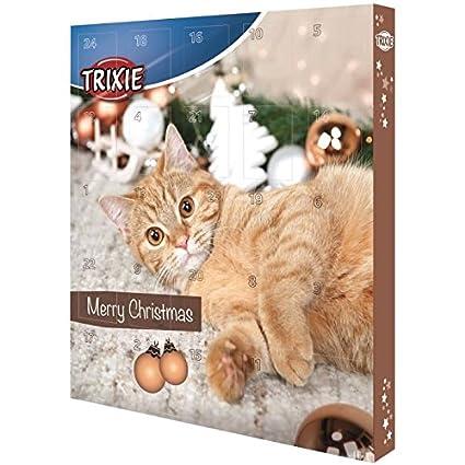 Calendrier de l'Avent avec des friandises pour les chats