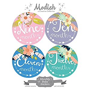 12 Monthly Baby Stickers, Tribal, Flowers, Feathers, Arrows, Girl, Baby Belly Stickers, Monthly Onesie Stickers, Baby Month Stickers, Arrows, Flowers, Tribal, Pink, Mint, Purple, Teal, Blue, Girl 8