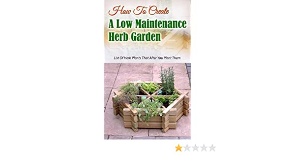 How To Create A Low Maintenance Herb Garden: List Of Herb Plants That After  You Plant Them