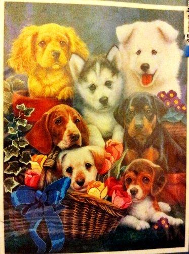 Sunset Gallery Crewel - Loving Puppies kit# 11123