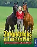 Zirkustricks mit meinem Pferd: Gymnastizieren, Motivieren, Partnerschaft stärken