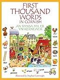 Kynsa Mil Er yn Kernewek: First Thousand Words in Cornish