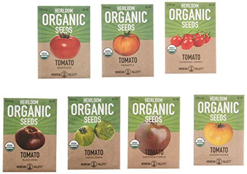 (Organic Heirloom Tomato Garden Seeds - 7 Non-GMO Varieties: Cherokee Purple, Golden Queen, Green Zebra, Pineapple, Brandywine Pink, Black Krim, Chadwick Cherry)
