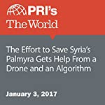 The Effort to Save Syria's Palmyra Gets Help From a Drone and an Algorithm | The World Staff