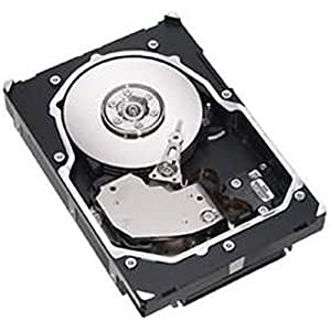 Fujitsu 450GB SAS HDD 450GB SAS - Disco duro (SAS, Servidor/estación de trabajo, ETERNUS DX60/90)
