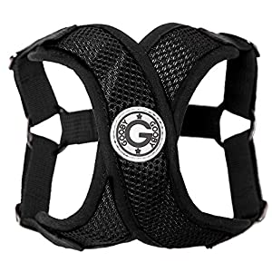 Gooby - Comfort X Step-in Harness, Small Dog Harness with Patented Choke Free X Frame 23