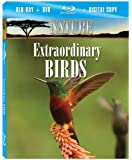 Nature: Extraordinary Birds [Blu-ray]