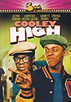 Cooley High DVD