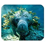 2014 New Arrival Ocean Animal Manatee Customized Rectangle Non-Slip Rubber Mouse Pad Gaming Mousepad (SunshineMP-670)