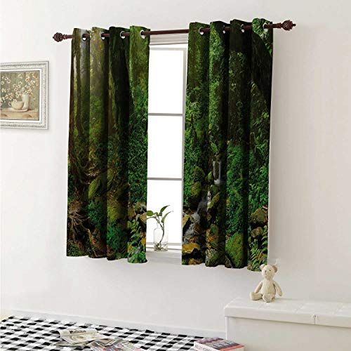 shenglv Landscape Waterproof Window Curtain Rainforest Trees and Fresh Grass in Nepal Jungle Wildlife Nature Tropical Photo Curtains for Party Decoration W84 x L72 Inch Green Brown